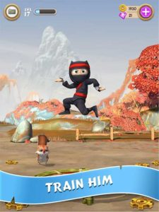 Train Your Ninja Clumsy