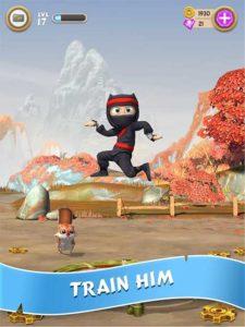 Train Your Ninja Clumsy