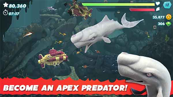 become an apex predator